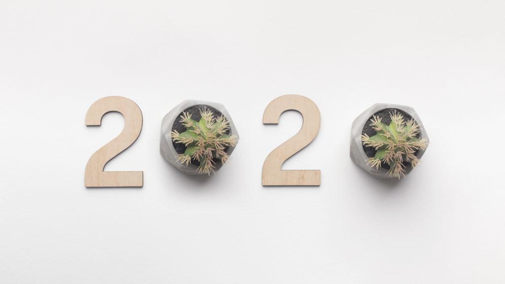 Des cartes de vœux à planter, idée photos pour les cartes de vœux 2020 - Epictura